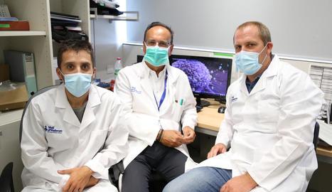 Vall d'Hebron identifica una proteïna clau per evitar la metàstasi del càncer de mama