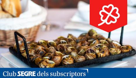 L'emblemàtic Hostal del Carme ens ofereix el millor descans i la millor gastronomia de l'Urgell.