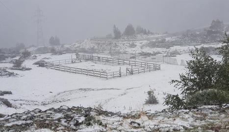 El port de la Bonaigua, on va ser necessari l'ús de cadenes divendres passat per la nevada.