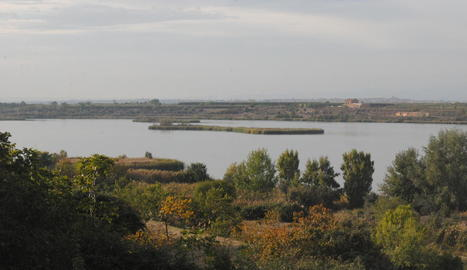 L'estany d'Ivars d'Urgell i Vila-sana.