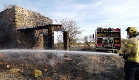 Al foc de les Borges es va cremar un camp d'ametllers.