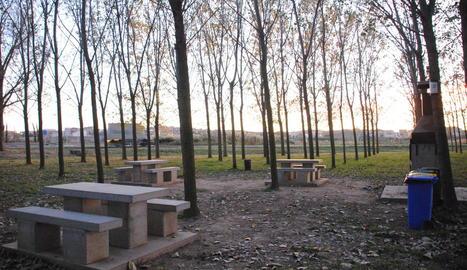 Els Mossos van sorprendre dimecres diverses persones en una barbacoa en aquesta zona de Linyola.