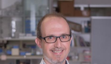 Albert Lecube, cap d'Endocrinologia i Nutrició de l'Arnau.