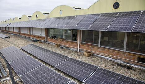 Els plafons tenen una potència de 74 kW.
