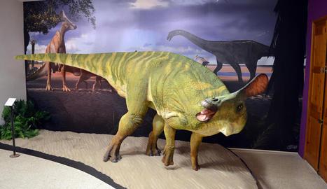 El dinosaure d'Isona amb les restes fòssils recuperades fins ara i fotos del fèmur i l'arc hemal.