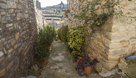 El carrer de les Flors és un dels atractius de Vilagrasseta.