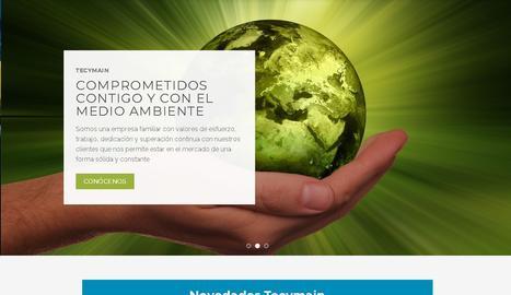 Una captura del web de Tecymain.