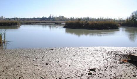 Recta final del procés de buidatge parcial de l'estany d'Ivars i Vila-sana