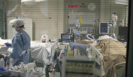 Pacient ingressat a l'Hospital Verge de la Cinta de Tortosa.