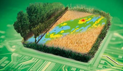 Les dades, el futur de l'agricultura