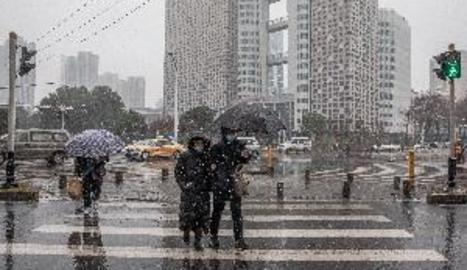 El mercat de Wuhan on va sorgir la covid intenta girar full un any després
