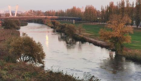 Ombra de llum, riu de silenciOmbra de llum, riu de silenci