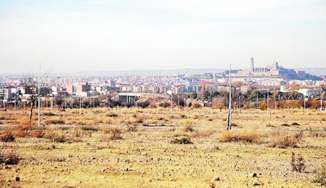 Vista de part dels terrenys de Torre Salses.