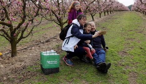 La floració dels fruiters atreu una setantena de persones a Alcarràs en una ruta guiada adaptada a les restriccions