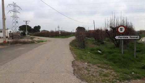 Vista de la partida Tossal, on es produeixen la majoria de robatoris.