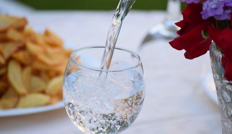 La ingesta diària d'aigua recomanada és d'uns dos litres diaris.