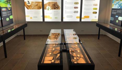 Vista de la nova exposició de fòssils al Centre d'Interpretació del Montsec a Vilanova de Meià.