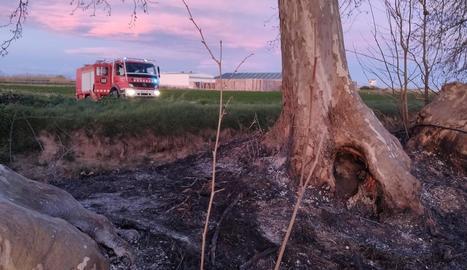 Els bombers, actuant a la zona afectada pel foc.