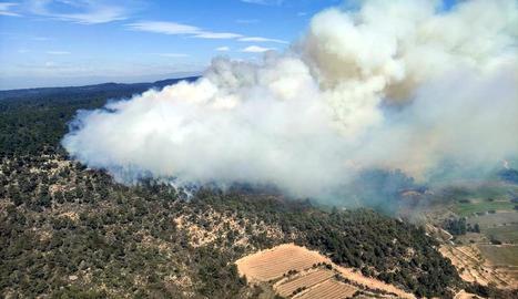 Imatge aèria de l'incendi declarat ahir al migdia a Senan, que va arribar al terme de Fulleda.