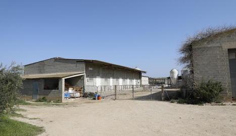 L'accident es va produir a les 8.48 hores en aquesta granja d'Alcarràs.