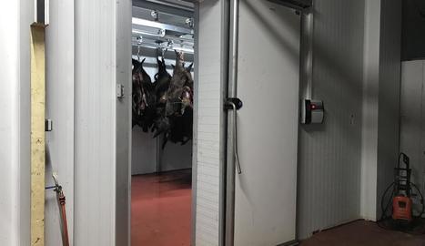 Imatge d'arxiu del punt de recollida de carn a Sort.