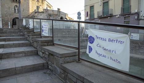 Algunes de les teles de la iniciativa artística, penjades en diversos carrers de Guissona.