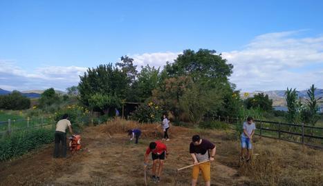 Els membres de la Cooperativa Alba Jussà treballen a l'hort.
