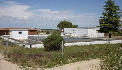 Els dipòsits de l'aigua de Bellpuig.