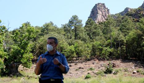 Punts segurs per atacar les flames: els bombers es preparen per fer front a grans incendis a les muntanyes de Prades