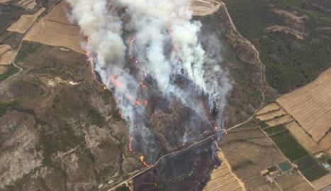 Estabilitzat l'incendi originat a Alfarràs i que ha cremat 55 hectàrees de Catalunya i l'Aragó