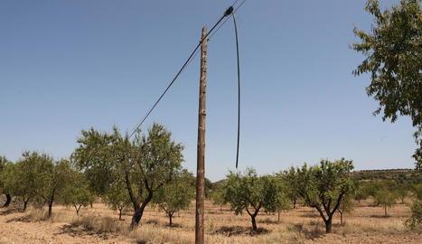 Imatge del pal on es va robar el cable telefònic.