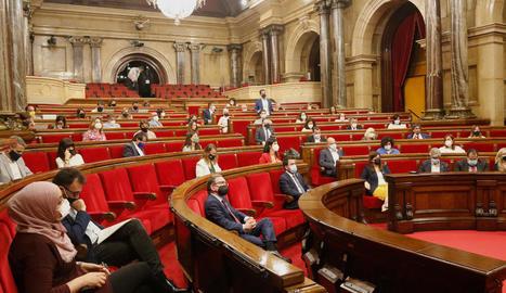 El Parlament aprova limitar el creixement de les granges a les zones amb les aigües més contaminades pels purins