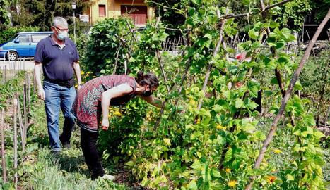Senterada converteix terrenys en desús en horts comunitaris