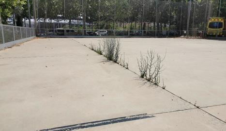 La pista annexa, abandonada - La pista exterior annexa al pavelló Onze de Setembre, inaugurada a finals del 2016 i en desús des de fa un any i mig per culpa de la pandèmia, es troba en estat d'abandó, amb abundants esquerdes a través de les  ...