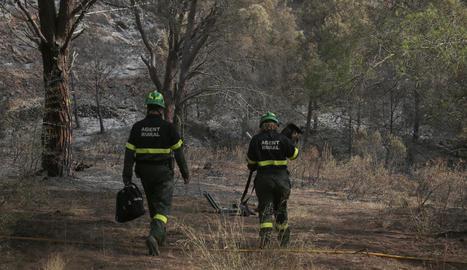 Imatge de dos agents rurals en una zona cremada.