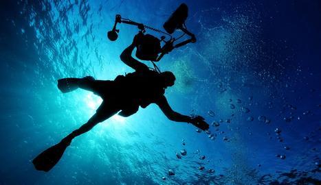 Si t'agrada fer submarinisme, apunta't aquestes destinacions