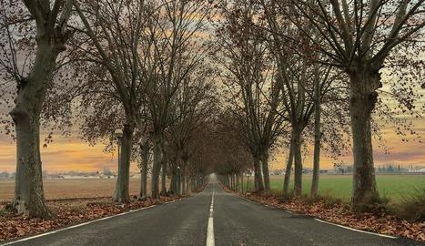 L'entorn destaca per les terres de regadiu i àrees forestals.