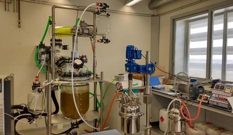 Polifenol per a cosmètica de la biorefineria.