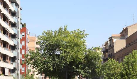 Vista general de l'avinguda Prat de la Riba.
