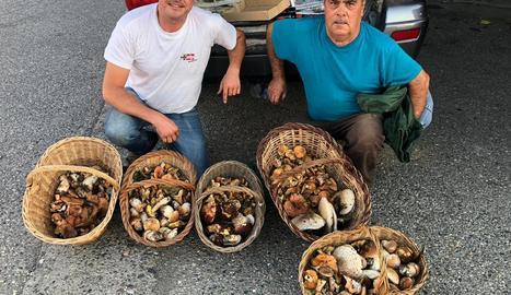 Manel Muñoz i Joan Mora, de Cervera, mostren el seu 'botí' després d'una jornada boletaire al Ripollès.