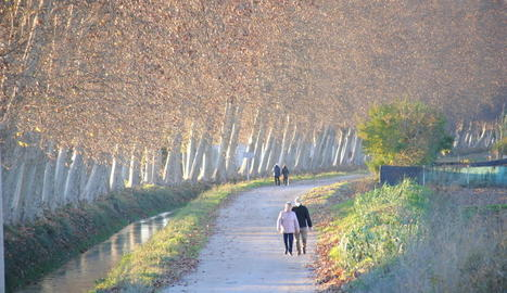 La banqueta del Canal, la principal via verda de la ciutat