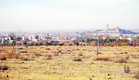 Els terrenys del pla de Torre Salses.