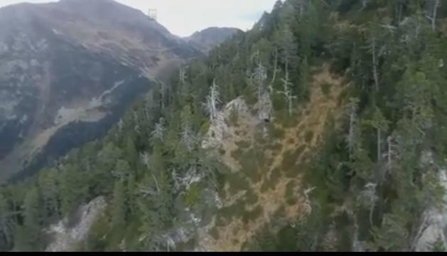 Una captura del vídeo.