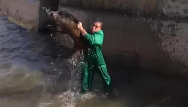 El maltractament va tenir lloc en una séquia del canal de Pinyana.