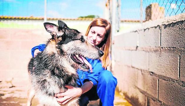 Estar amb els animals, la clau dels voluntaris.