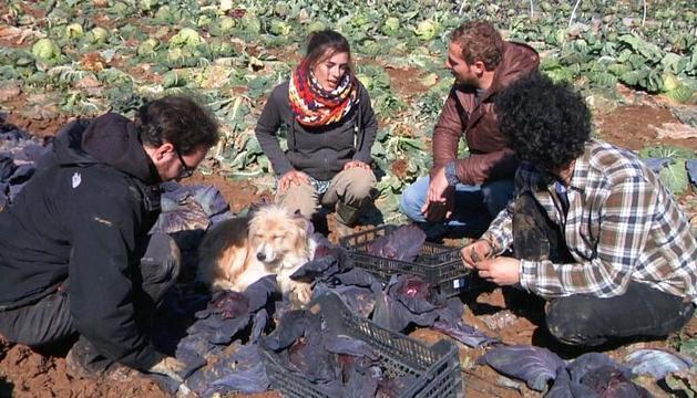 Habitantes del pueblo segoviano de Valdivielso, en el huerto.