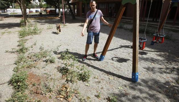Arbustos descontrolats en una avinguda lleidatana.