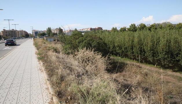El terreno en el que los musulmanes pretenden edificar la mezquita, junto al puente de Pardinyes.