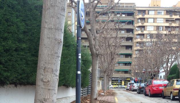 Brutícia als carrers de Lleida