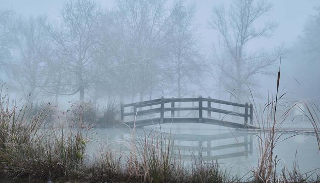 'Un matí de boira a la Mitjana', és el títol de la fotografia d'Íngrid Pino: la guanyadora del concurs 'El teu temps, l'hivern'.